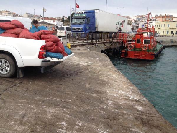 Gelibolu'da 2,5 Ton Kum Midyesi ve 400 Kilo Deniz Patlıcanı Ele Geçirildi