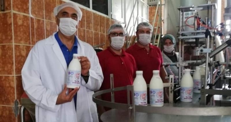 Biga Meslek Yüksekokulunda Pastörize Süt Üretimi Başladı