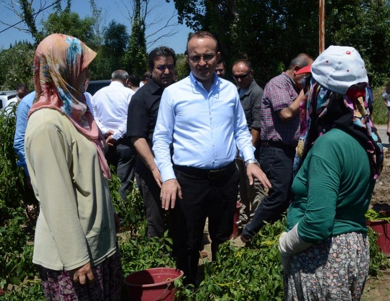 Bülent Turan'dan Dünya Çiftçiler Günü Kutlama Mesajı
