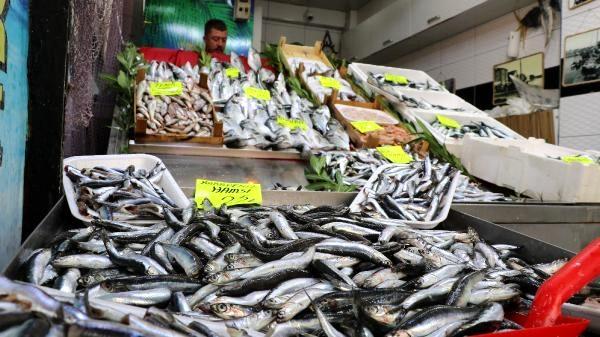 Çanakkale'de, Yeni Av Sezonunun Başlamasıyla Birlikte, Balık Tezgahları Doldu