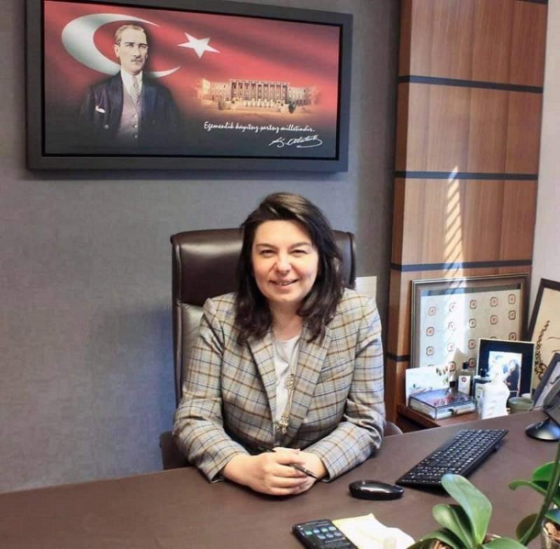 İskenderoğlu, Bayındırlık, İmar, Ulaştırma ve Turizm Komisyonu'nda Devam Edecek