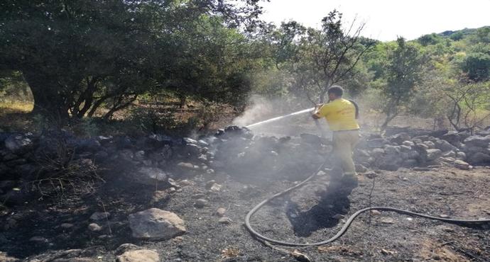 Çanakkale'de tarım arazisinde yangın