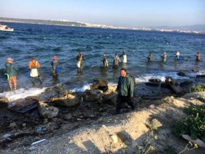 Bellerine Kadar Denize Girip, Lüfer Avladılar