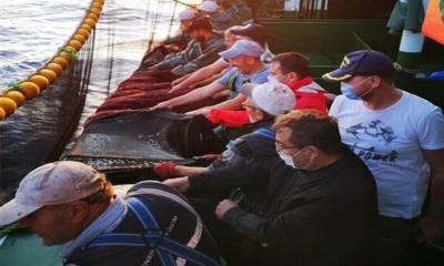 Çanakkale Valisi, Teknede Balıkçılarla Ağ Çekti