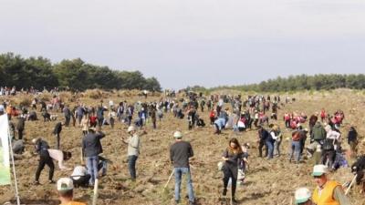 Çanakkale'de 205 Bin Fidan Toprakla Buluşturuldu