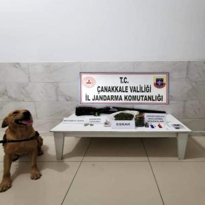 Çanakkale'de Narkotik Köpek 'Roket' İle Uyuşturucu Operasyonu: 1 Gözaltı