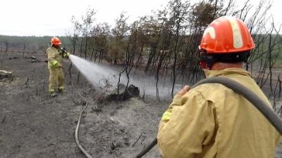 Çanakkale'deki Orman Yangınını Soğutma Çalışmaları Sürüyor