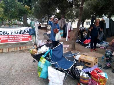 İkinci El Eşya Satarak Sokak Hayvanlarına Destek Oluyorlar