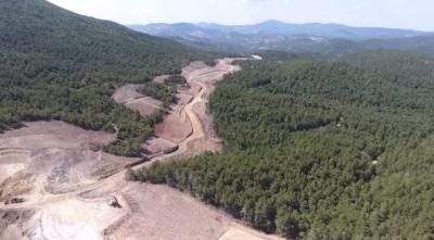 Kaz Dağları'nda binlerce ağacın kesimine tepki olarak