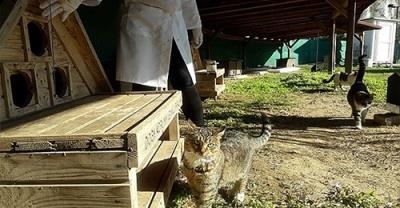 Kedi Köyünde Temizlik ve Sağlık Taraması Yapıldı
